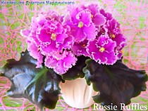 Rosie Ruffles (D. Harrington)